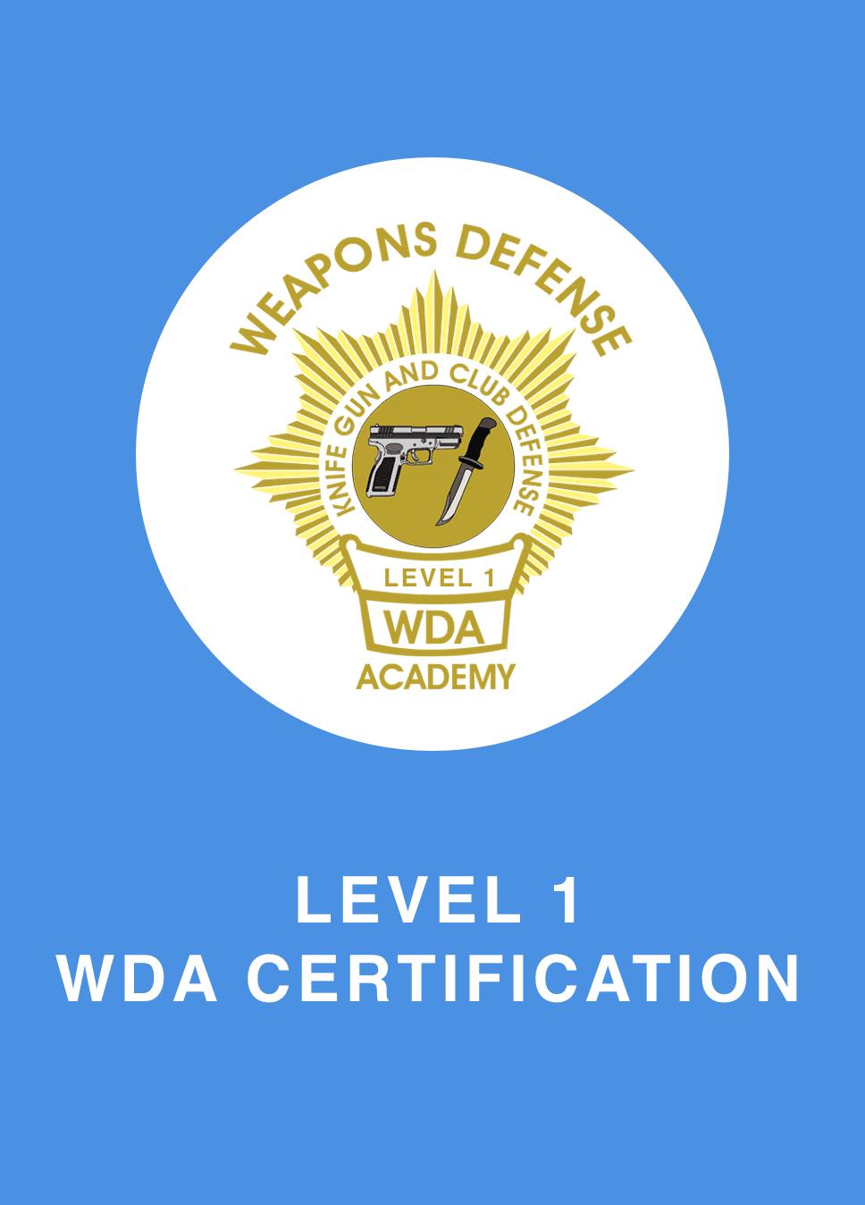 Certificate-level-1 Copy